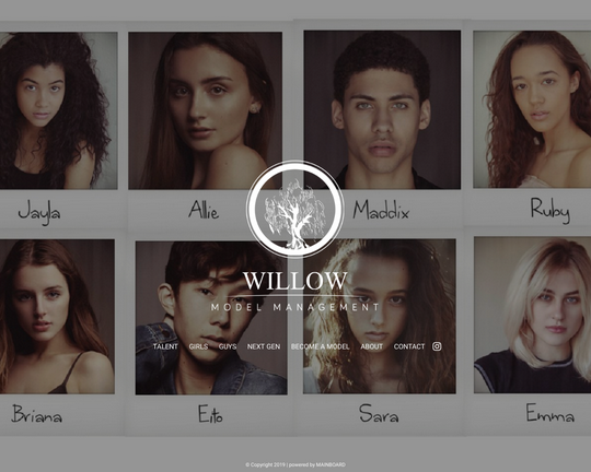 Willow Model Management