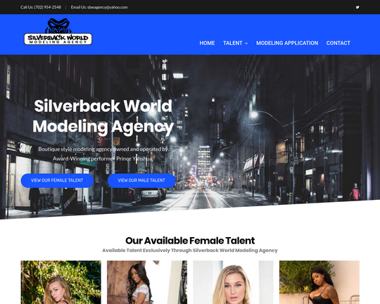 Silverback World Modeling Agency